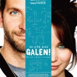 silver linings playbook international movie poster