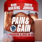 Pain and Gain Poster